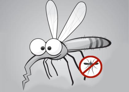 Was hilft gegen Mücken